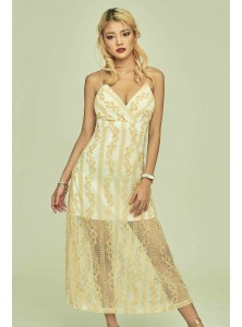 Aphelia Embroidered Maxi Dress in Brocade