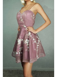 Jervois Embroidered Skater Dress in Dust Pink
