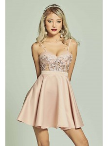 Arabella Bustier Lace Skater Dress
